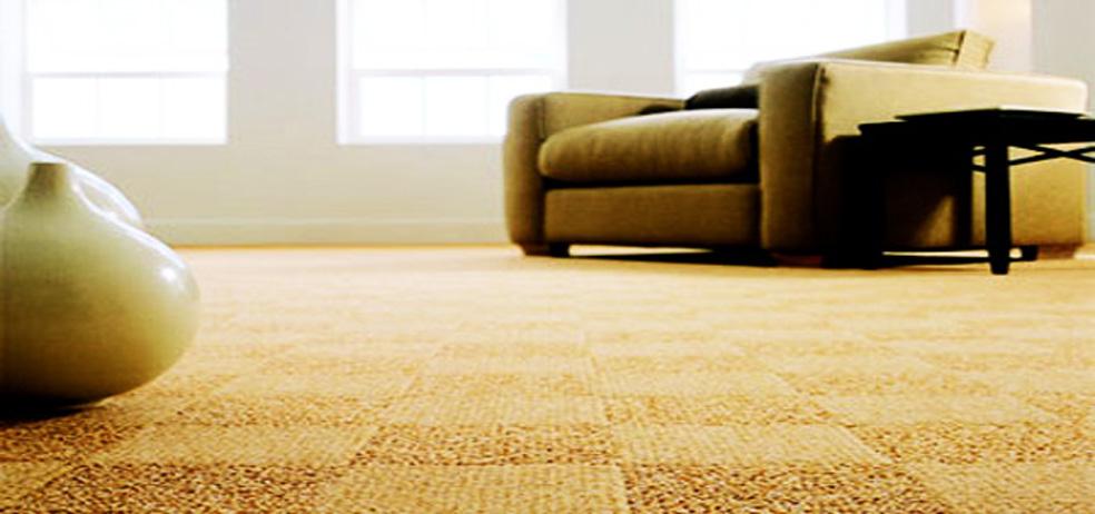 carpet care 2